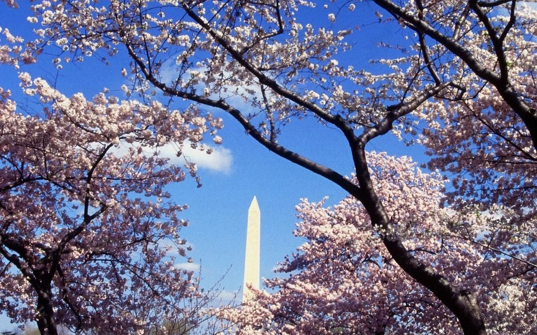 Save $30 off of FTU Washington DC